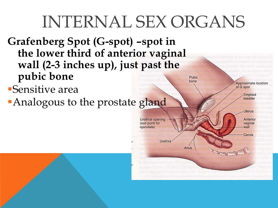 Infectious Vaginitis